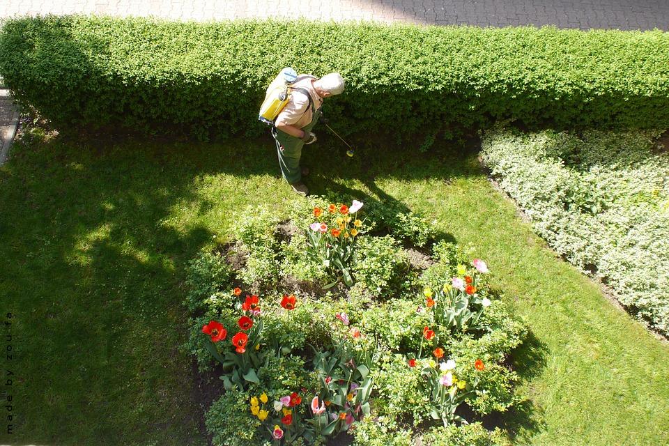 L'entretien de jardin par un professionnel à domicile