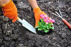 Les meilleurs conseils pour l'aménagement paysager de jardin
