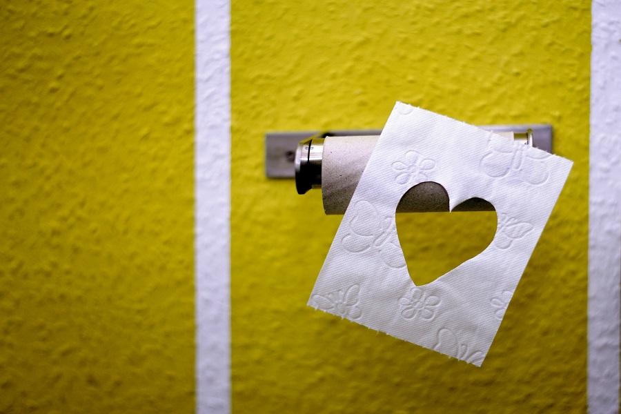 Pourquoi utiliser un porte papier toilette original ?